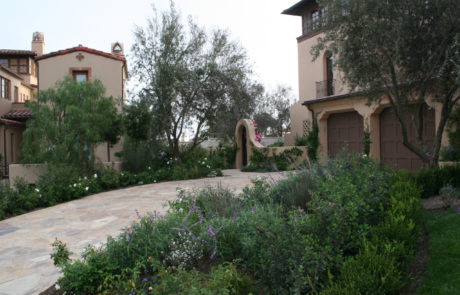 Newport Beach home entrance landscaping.