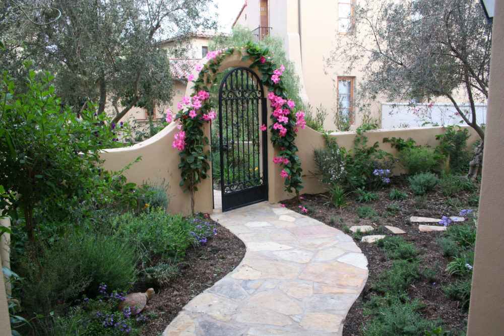 Sholeh partow entry way climbing flower design.